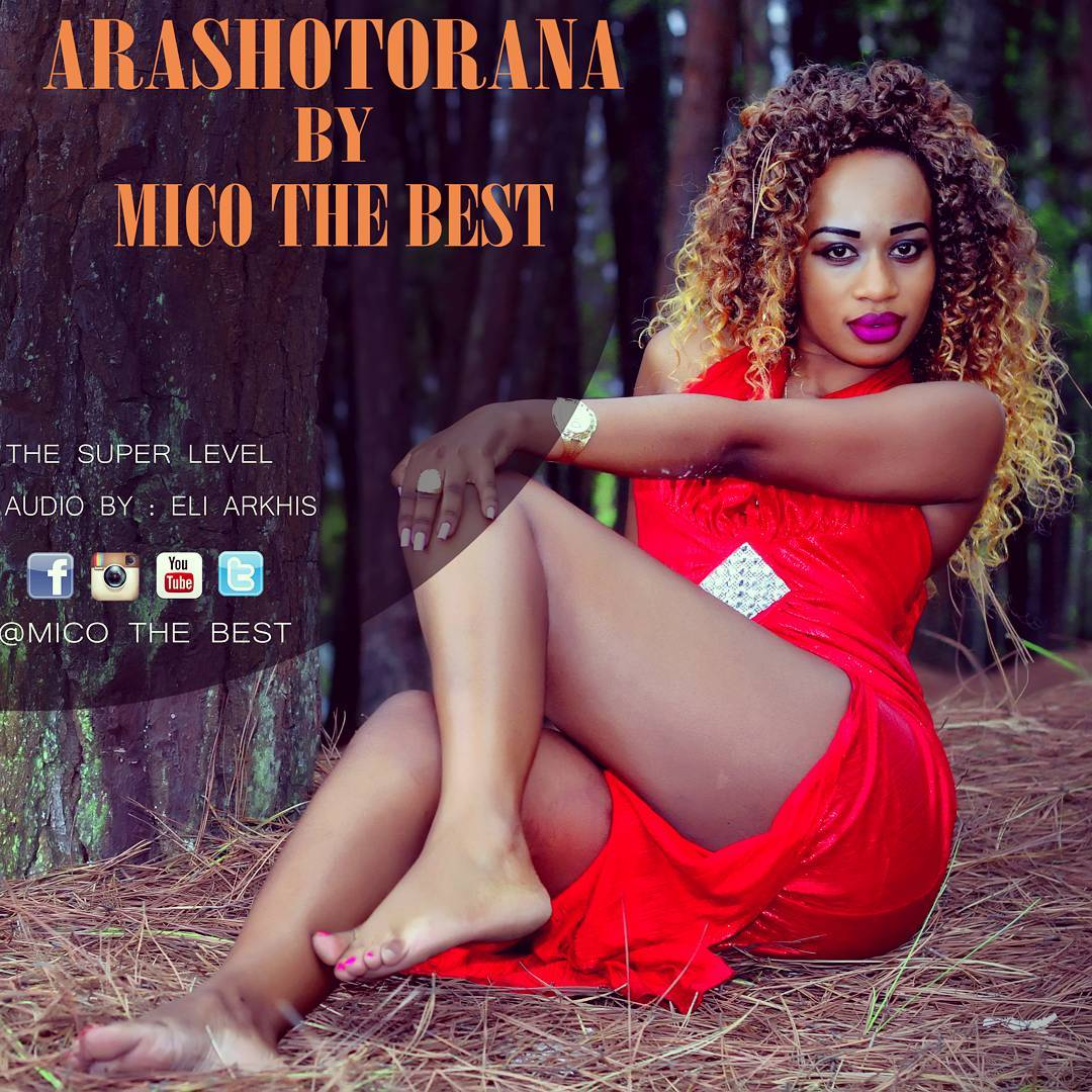 Arashotorana by Mico the Best