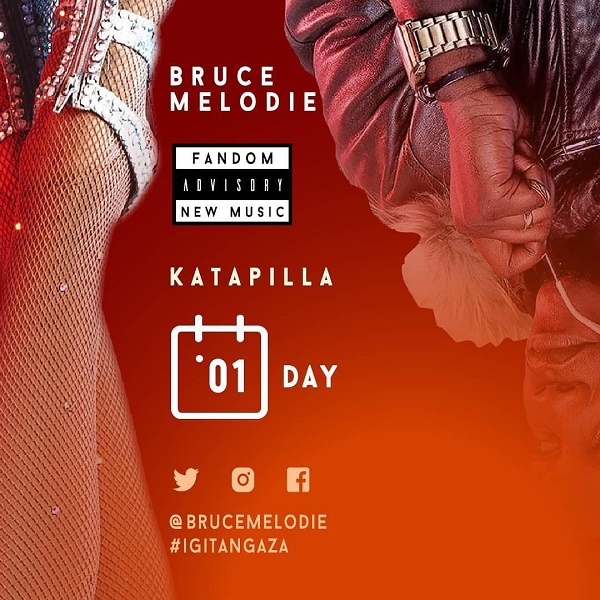 Play Katapilla by Bruce Melodie mp3,indirimbo, song on eachamps.rw