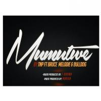 Mu Mutwe by TNP ft Bruce Melodie and Bull Dogg
