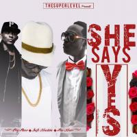Play, download She Says Yes by Big Farious ft Safi Madiba and Fireman mp3, song on eachamps.rw