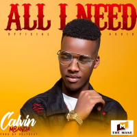 All i Need by Calvin Mbanda