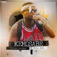 Kemosabe Freestyle